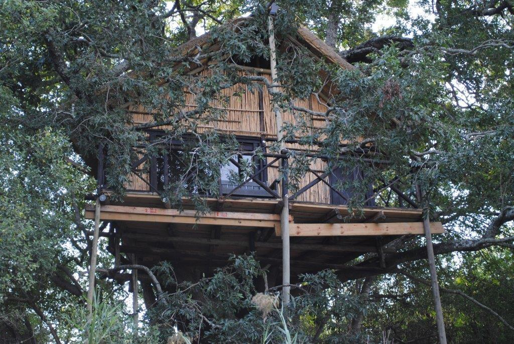 One of the treehouses at Marc's Camp. Safaris to the Kruger Park