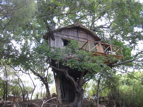 One of the treehouses at Marc's Treehouse Lodge