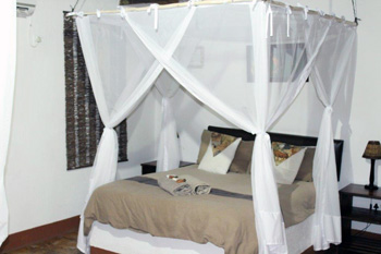 New Mosquito nets over bed at Tremisana