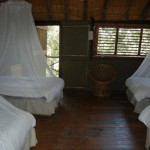 Treehouse 3 interior