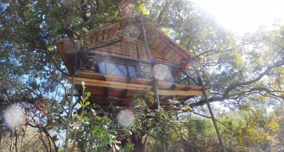 Treehouse at Marc's Treehouse Lodge