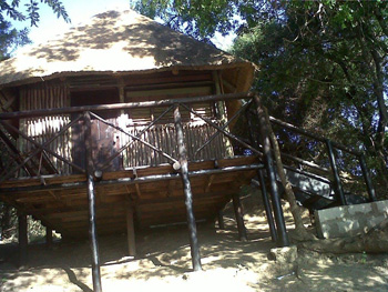Newly refurbished Treehouse 1