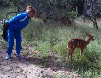Sandy and young Nyala at close quarters