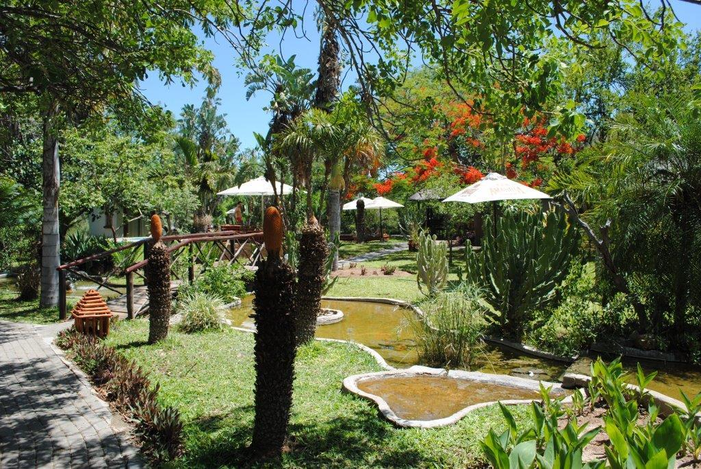 The water feature and lush gardens at Tremisana Game Lodge, a Kruger Park Safari lodge