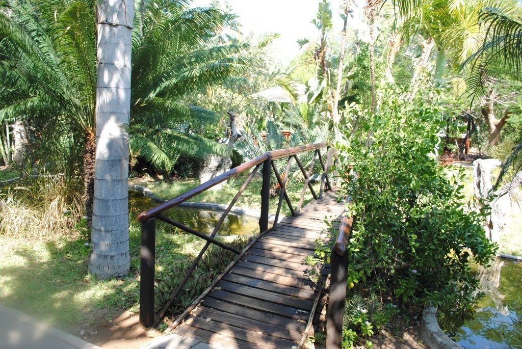The lush gardens at Tremisana