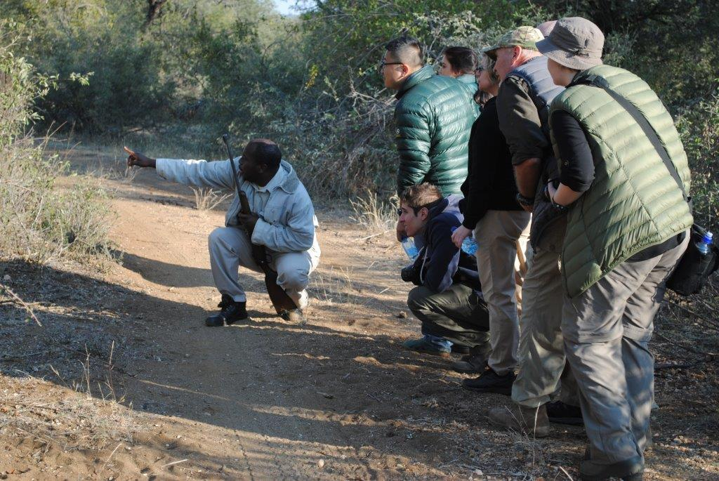Our armed rangers conducting a bush walk.