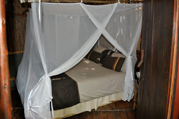 Mosquito net over bed at Treehouse Lodge
