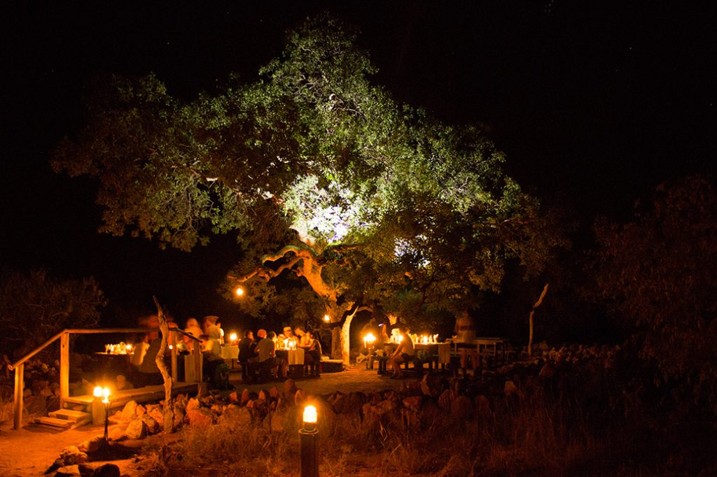 The beautiful Marula Tree Boma under the African night sky