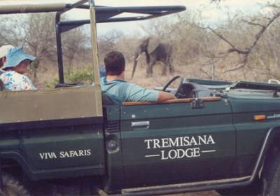 Elephant spotted in Kruger Park