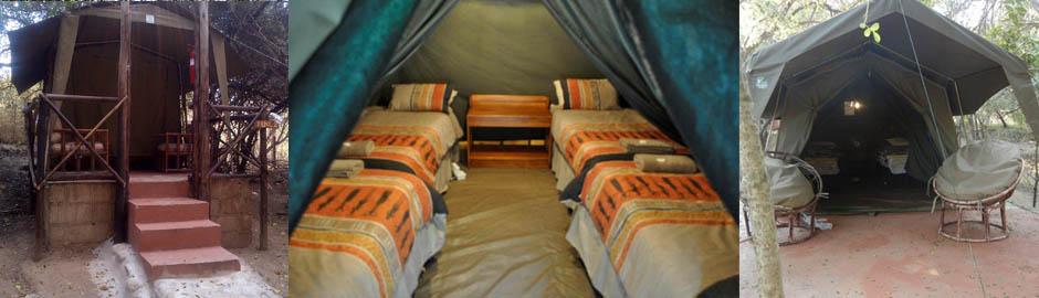 3 Day Tent Kruger National Park Safari at Marc's Camp
