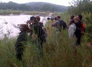 Excited clients view hippo on Bush Walk along Olifants River