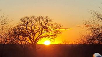 Beautiful Sunset at Marula Boma.