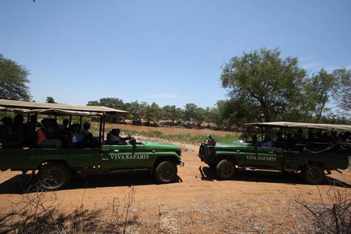 Group on Landcruisers near Oifants River.