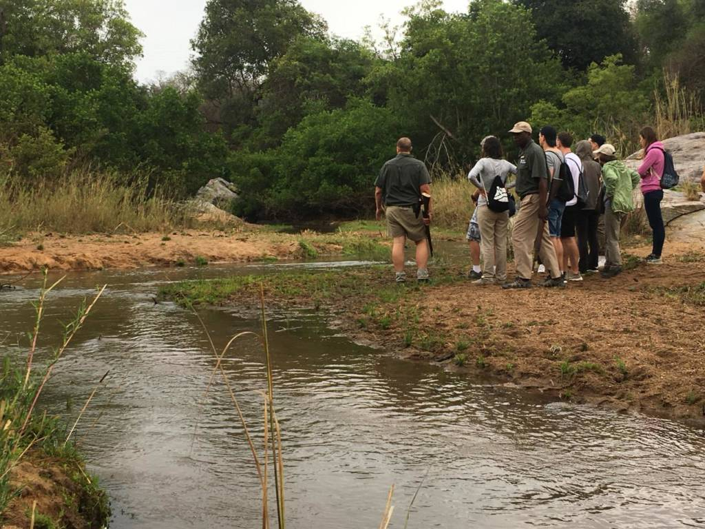 Bush walk along Klaserie River