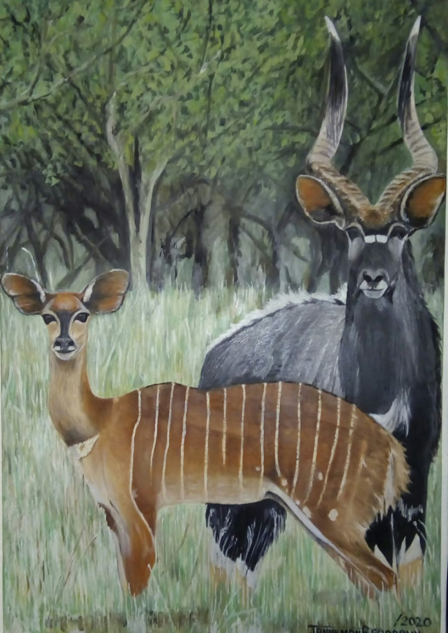 Brilliant painting by Janneman of nyala bull and ewe